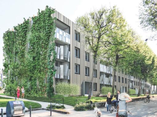 Assistance à Maîtrise d'Ouvrage | Rénovation énergétique de 447 lgts | Rennes (35)